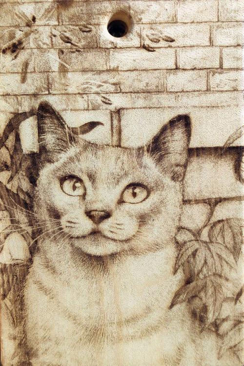 Разделочная доска с рисунком кошки из кедра