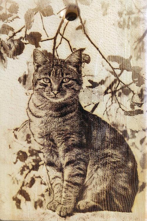 Разделочная доска с картинкой кошки из кедра